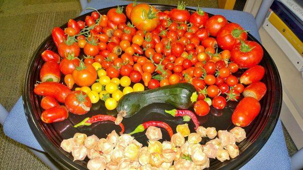 Assortment of garden vegetables