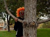 Creepy clown behind a tree
