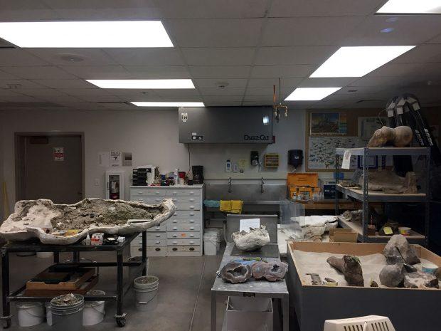 Bone lab