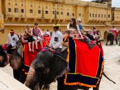 Students ride on elephants in India