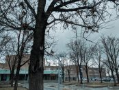 South City Campus during winter