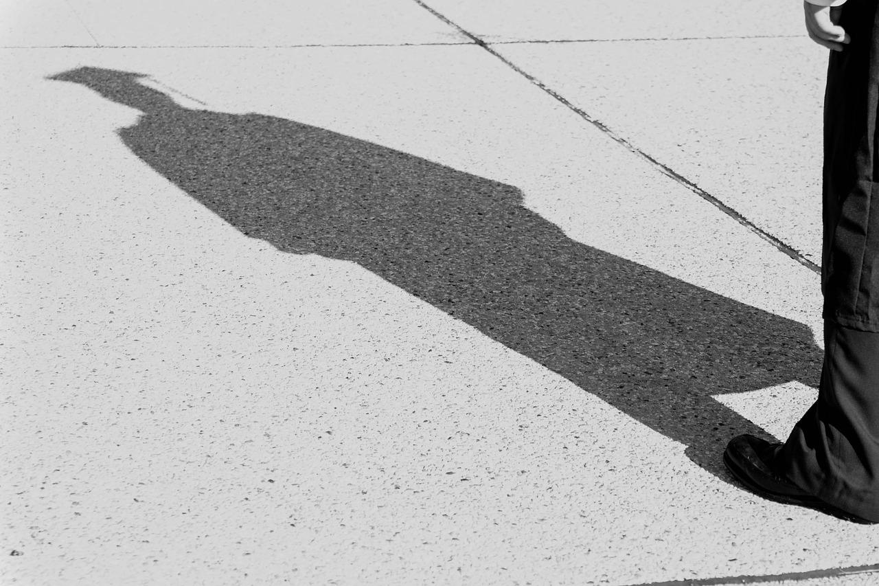 Graduate shadow
