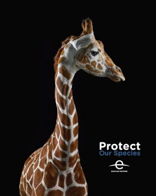 Protect Our Species poster