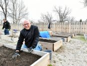 Dr. Lepper cleans up a garden bed
