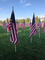 Rows of American flags