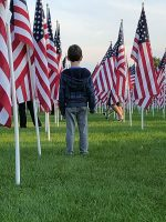 Young boy in between rows of flags