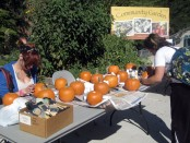 Two SLCC students paint pumpkins