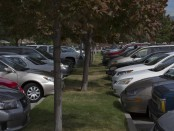 Full parking lots at South City