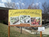 SLICE members built community gardens to provide food for the hungry for one of their projects.