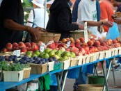 Fruits for sale at the Farmers Market