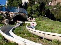 Alpine slide at Snowbird