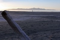 Walking the beach at Great Salt Lake