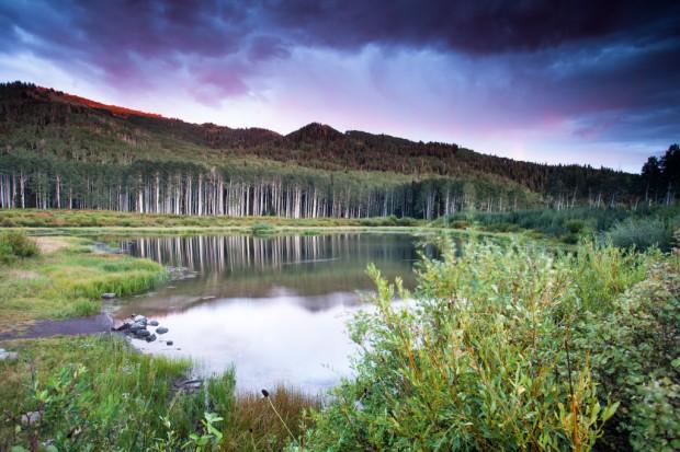 Willow Lake at Sunset