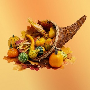 A cornucopia filled with gourds