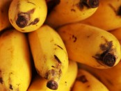 Bananas are a low-calorie source of potassium, calcium and fiber.