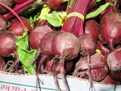 Beets are simple crops, but they have a wide variety of uses.