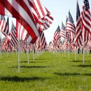 9/11 Healing Field
