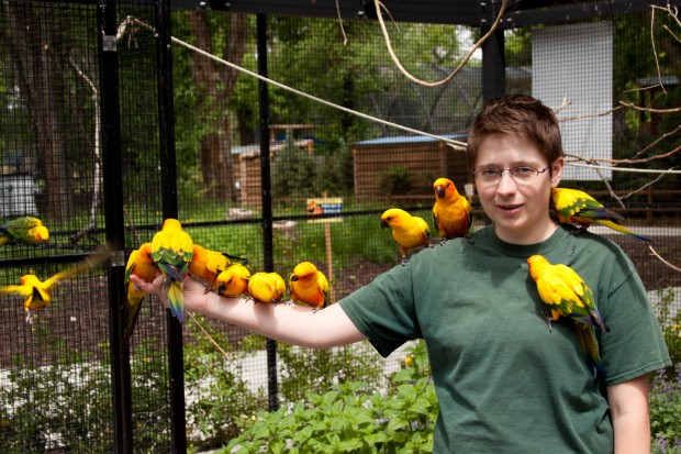Michelle Fisher feeding the Son Conures