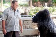 'Zookeeper' movie still