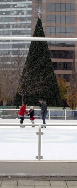 Skating at Gallivan Center