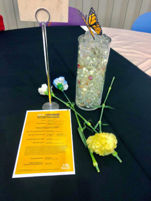 Program, carnations, butterfly on a table
