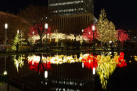 People walk through Temple Square holiday lights