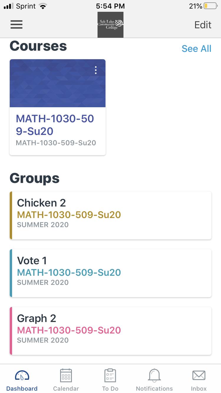 Screenshot of summer math class on Canvas app