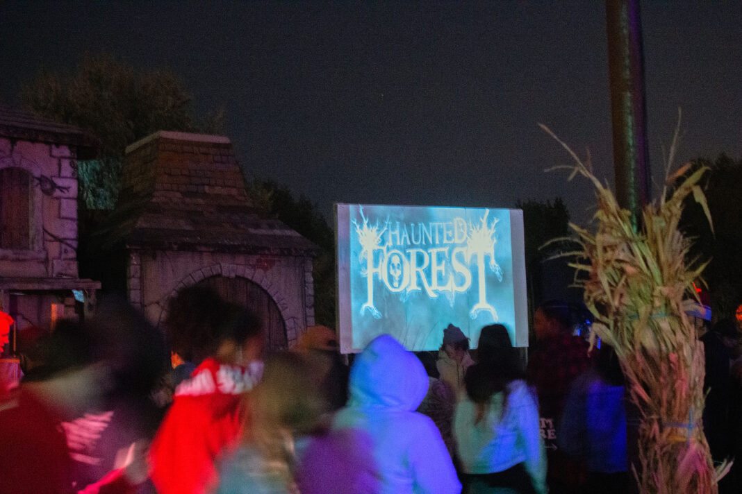 Patrons walk underneath Haunted Forest screen