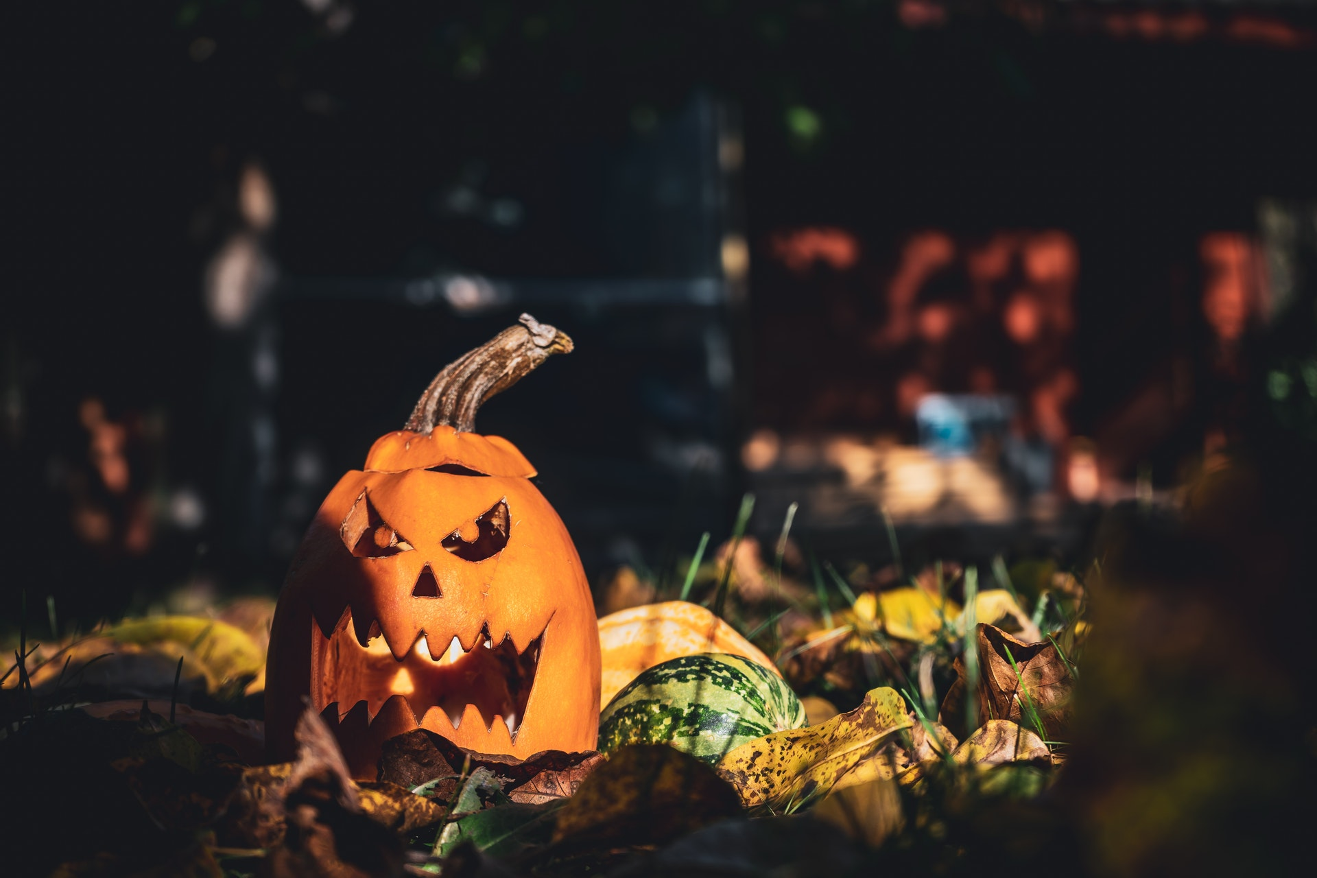 Orange and multicolored pumpkin decoration