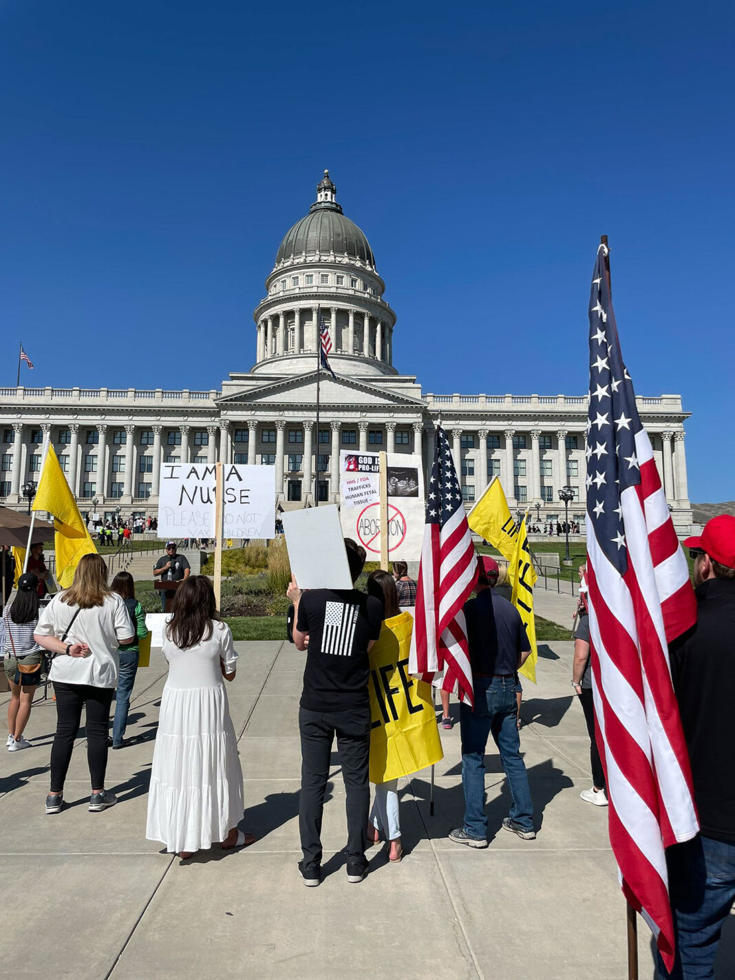 Several people carrying signs and flags