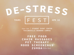 De-Stress Fest 2015