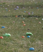 Toys and eggs on the ground