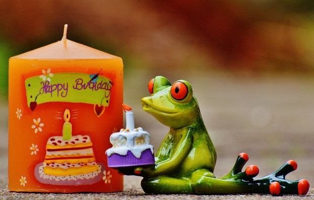 Birthday frog and candle