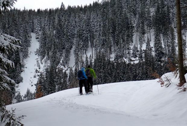 com-winter-activity-snowshoeing-stock